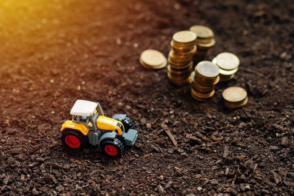 Should I invest With… Thrive Agric?